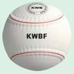 2017 KWB選手決定!